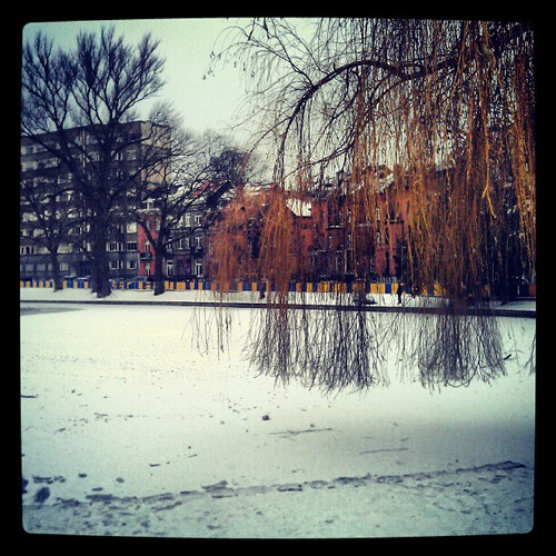some color in white #snow #brussels #winter #flagey