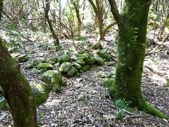 Anciennes bergeries de Lora : murets et pacages des bergeries