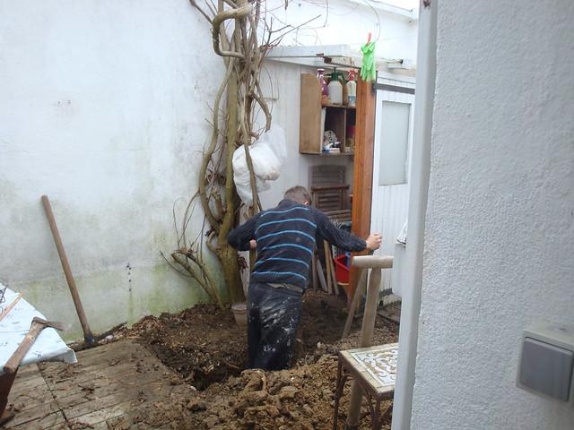 Dans mon Jardin d'Hiver 8430345170_b16d1f1d56_z