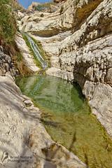 Natural pool and waterfall at Nahal David