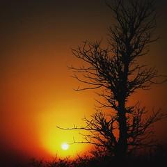 #sunset #sunsetphotography #Travel #traveldiaries #travelphotography #delhigram #instagram #dailyphoto