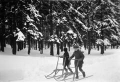 Children with kick-sleds, Enskede, Stockholm, Södermanland, Sweden