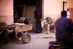 Couleur du Marrakech