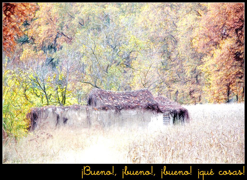 cerca de los jardines de Aranjuez en otoño