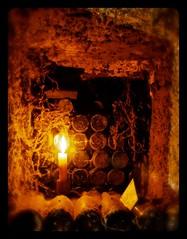 Cellar Final