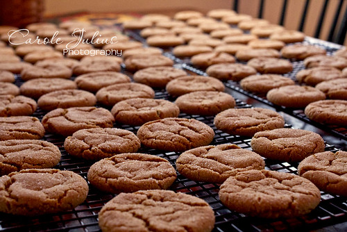 Ginger Cookies for Carole Knits