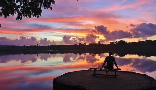 trees reflection water colors silhouette sunrise reflections relax bright lagoon poppies tropical vanuatu poppys portvila efate erakor poppysonthelagoon