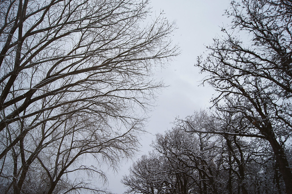 winteradventure4