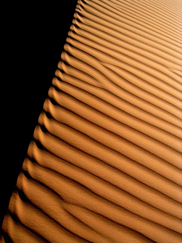 black yellow niger jaune sand desert trace traces sable