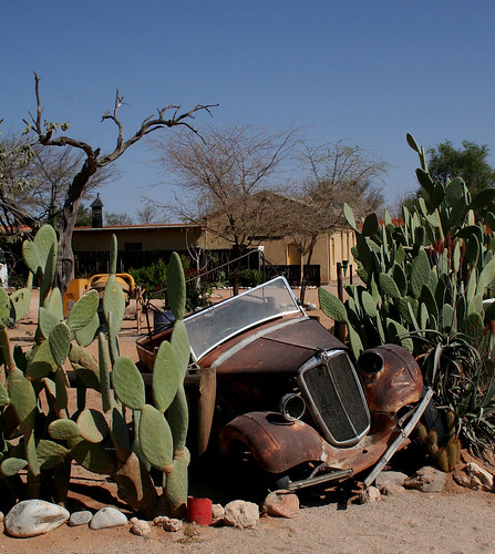 Car and cactus, Solitaire, Namibia