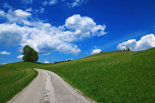 The landscape in Lower Austria during spring.