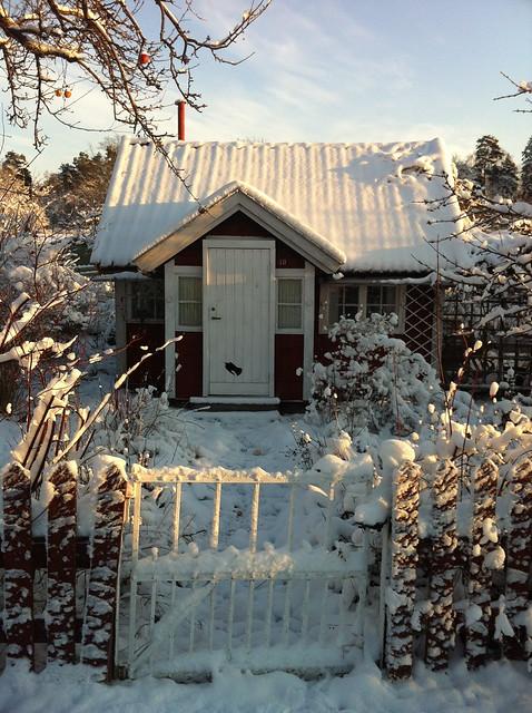 Vinter på kolonin