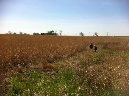 Prairie April