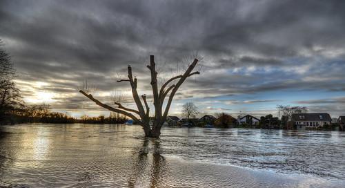 flood sigma1020 thamesflooding nikond3100 riverthamesfloods