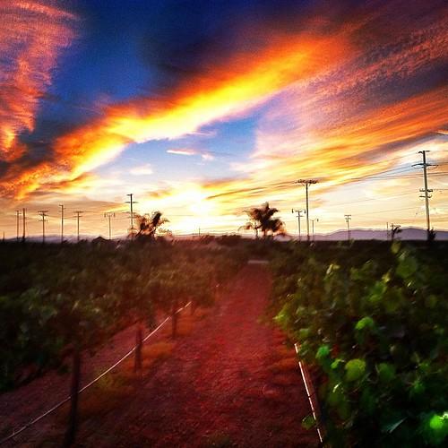 sunset jj sunsetmadness uploaded:by=flickstagram instagram:photo=29775769237555676423031 jjforum0416