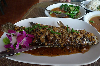 Phuket - Spicy Fish