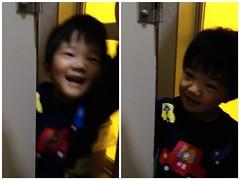 トイレをのぞきに来るとらちゃん 2013/1/9
