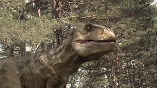 Enciso Dinosaurs_05