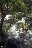 Kreta 2007-2 483