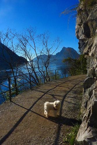 Sentiero di Gandria - on the way