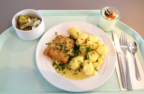 Welsfilet in Weißweinsauce / wels catfish filet in white wine sauce