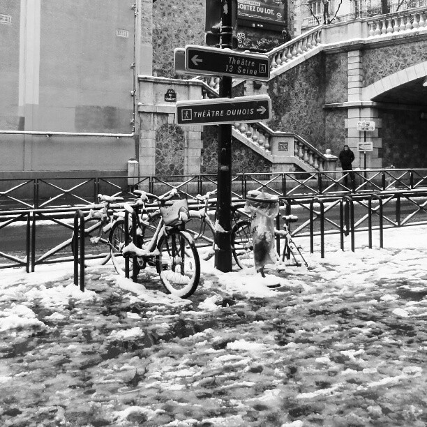 #snow #bicycle or #velo in #paris under #bridge #gadou in #french dans le #texte