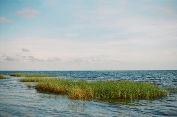 2012_08_Florida13.jpg