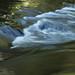 Beltzville State Park 11
