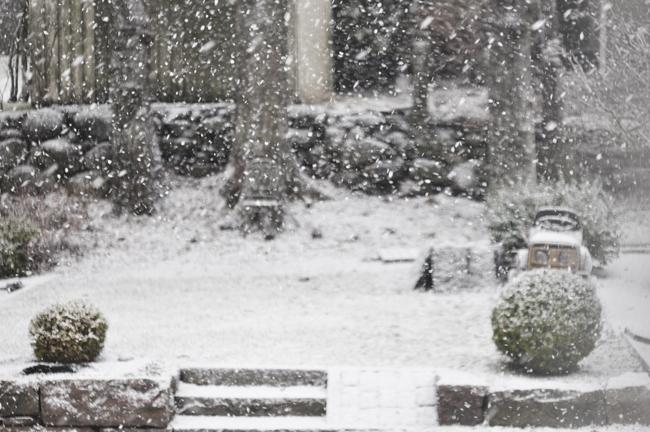 plötsligt kom det snö!