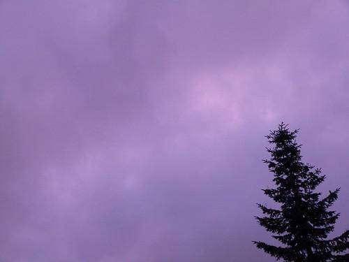 Purple Sky, No Filter
