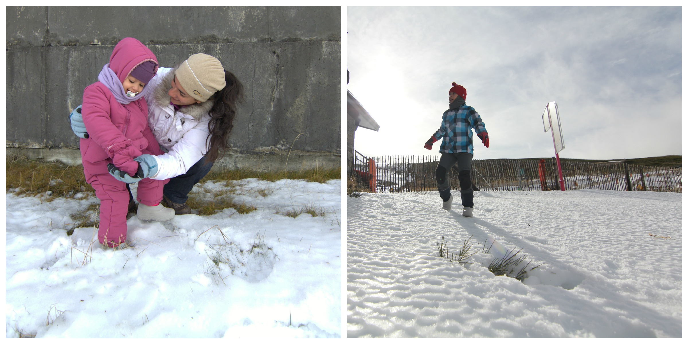 nievecollage7