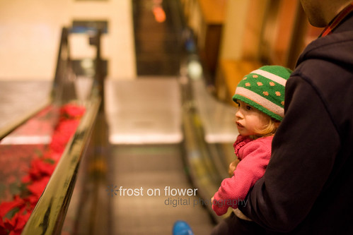 20121217-advent-day18-52.jpg