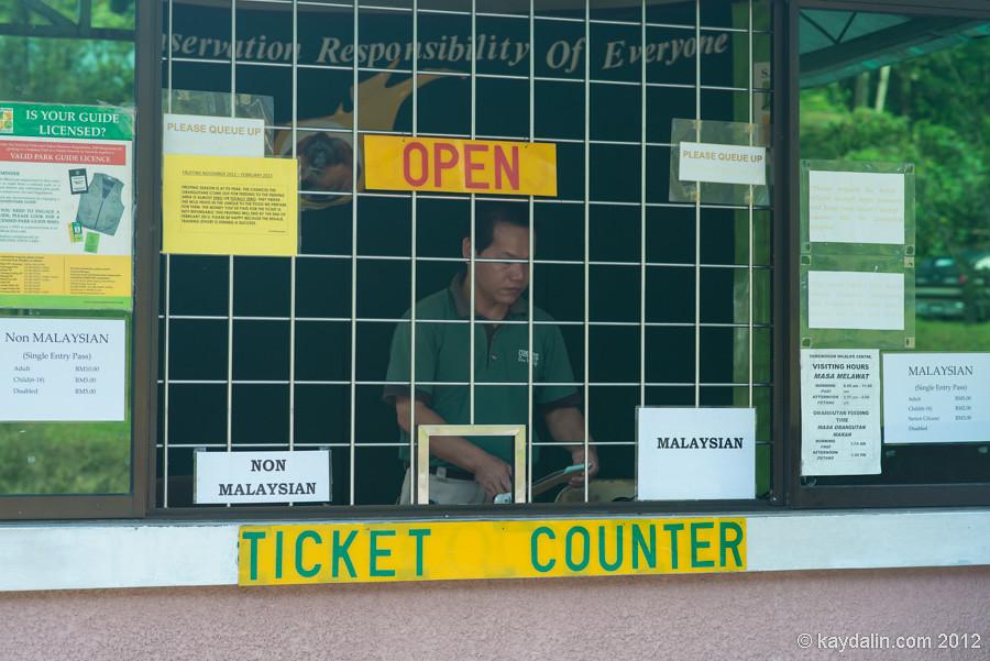 семенгох касса, билеты