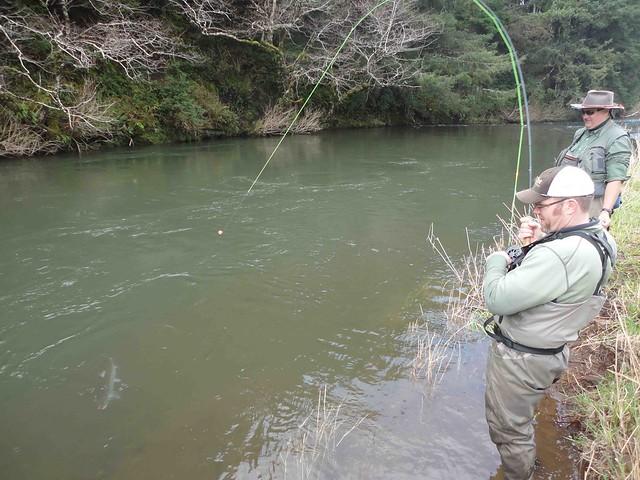 winter steelhead fly fishing oregon