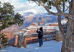 Grand Canyon National Park: Snow - December 24, 2012  0473