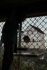 Marziyas New Bird Cage by firoze shakir photographerno1
