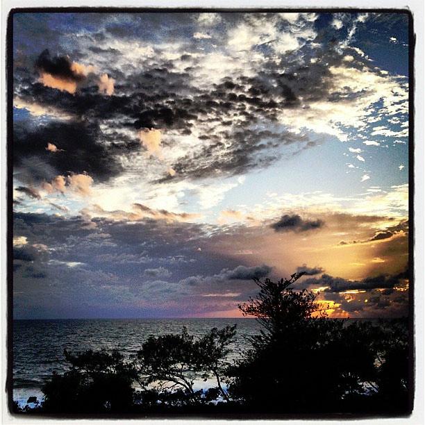 xmas beach sun
