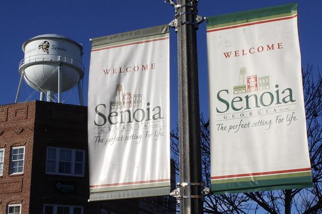 Homes In Senoia Ga For Rent