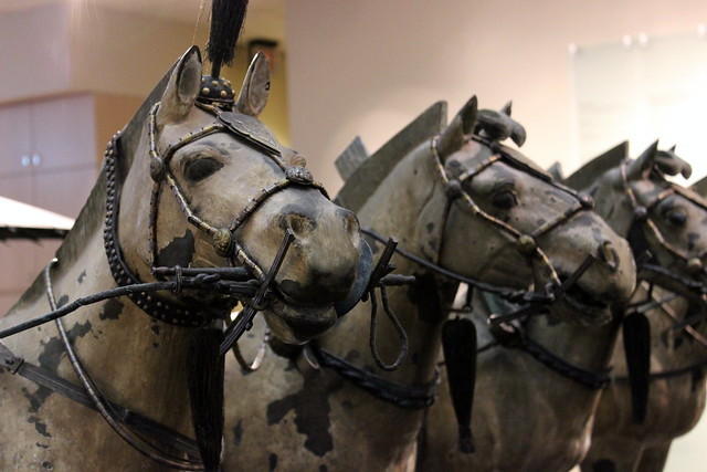 Horseses