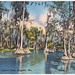 Lake scene, Lover's Lane, Augusta, Georgia by Boston Public Library