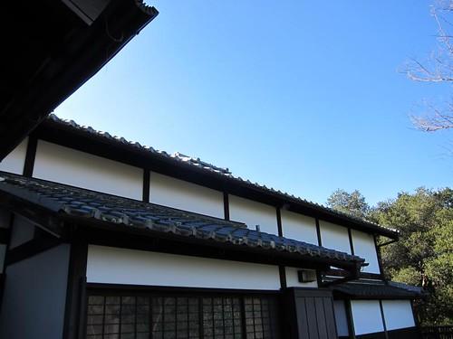Hakone Japanese Gardens, Saratoga, CA IMG_2324