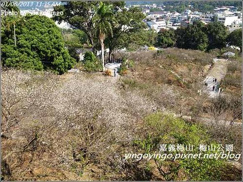 嘉義梅山_梅山公園20130106_R0071457