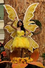 mythology(0.0), autumn(0.0), fairy(1.0), yellow(1.0), fictional character(1.0),