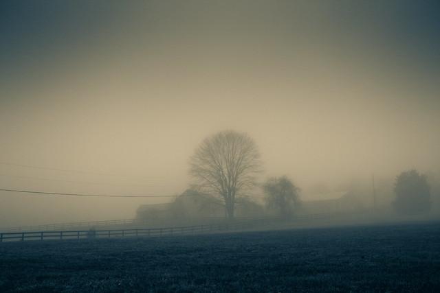 fog-26