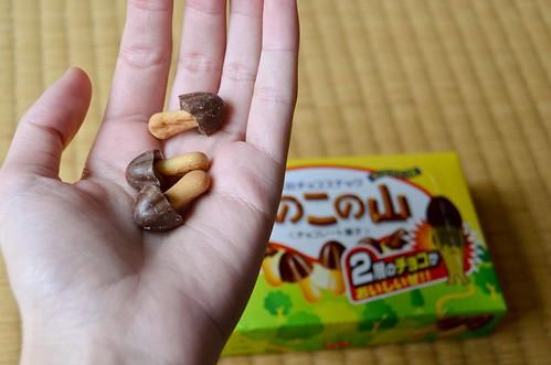Chocolate Mushroom Cookies