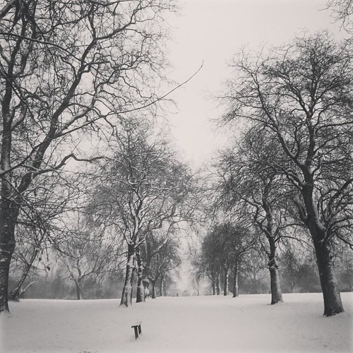 Regents park snow January 2013