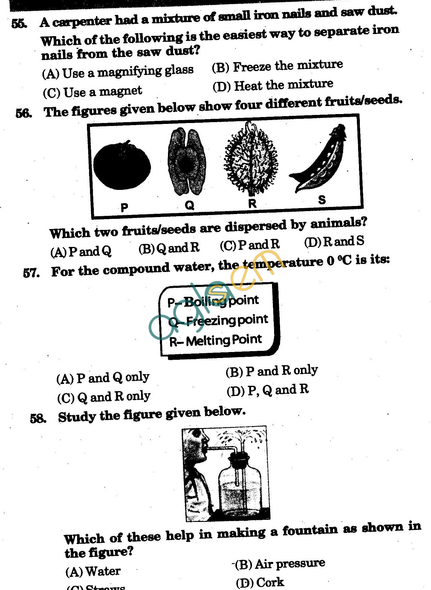 NSTSE 2010 Class V Question Paper with Answers - Science