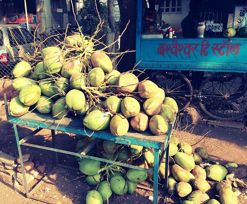 india beach water fruit asia coconut farming vegetable tropical tropic maharashtra pulp cart agriculture sangli chameleonfilter