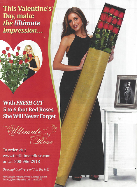 the ultimate rose -- 5 to 6 foot red roses