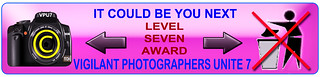 AwardL7.jpg